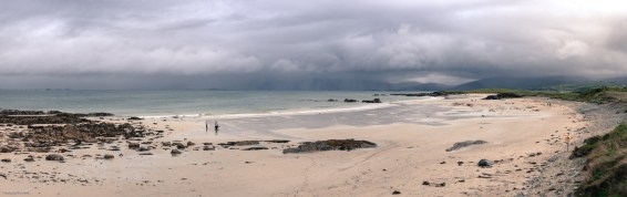 Panorama of beach scene, small group of people play with dogs, large raincloud covers distant horizon.