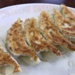 浜松餃子、餃子の砂子