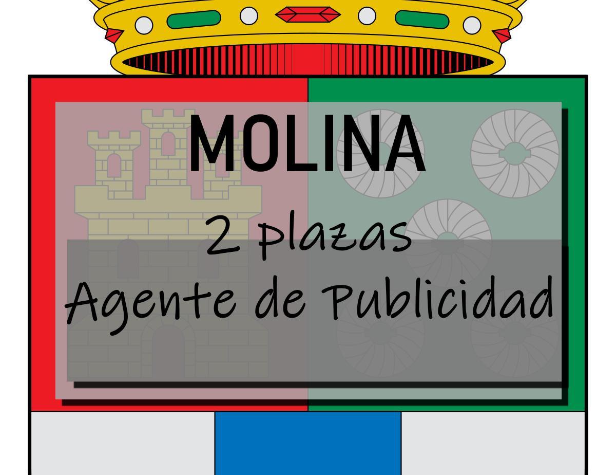 2 plazas Agente de Publicidad