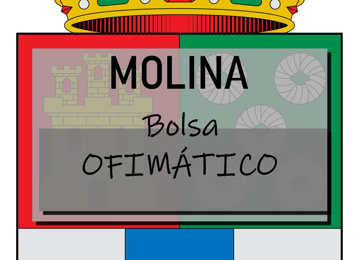 Bolsa de Ofimático de Molina de Segura