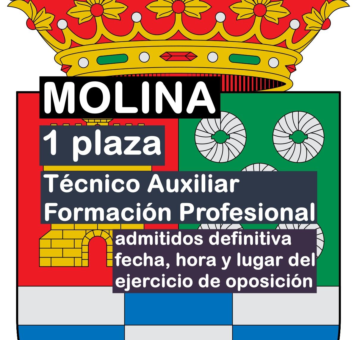 1 Técnico Auxiliar Formación Profesional en Molina de Segura