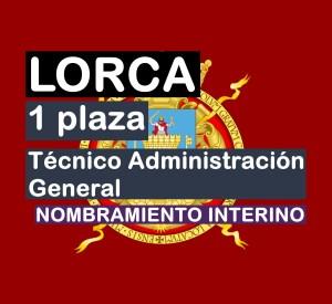 1 Técnico Administración General interino en Lorca