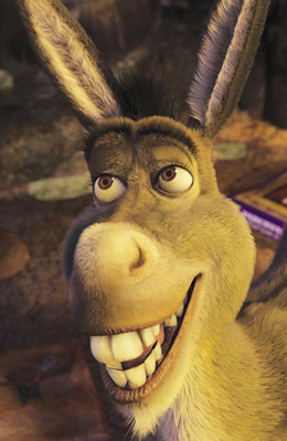 Image result for stupid donkey