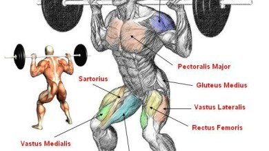 How to squat for muscle mass