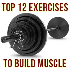 The Top 12 Best Exercises To Build Muscle | MuscleHack by Mark McManus