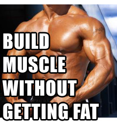 6 Ways To Build Muscle Without Adding Any Body Fat
