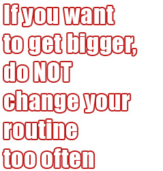 Why NOT Changing Your Routine Gives You Bigger Muscles