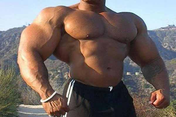 3 Reasons Why You Are Not Getting Bigger Muscle Mass