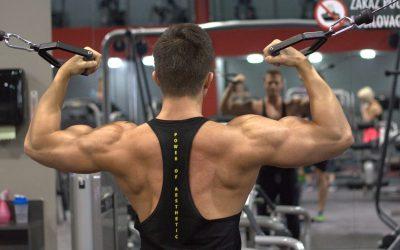 ¿Cómo usar la retracción escapular para ganar masa muscular?