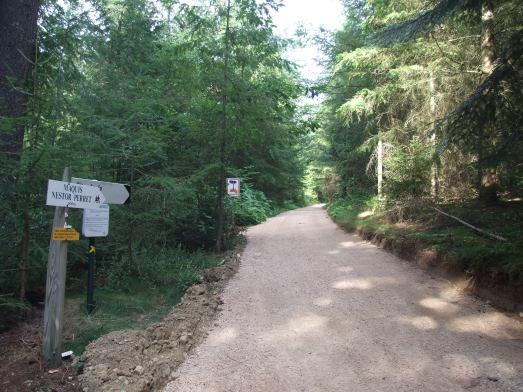 Chemin d'accès au site