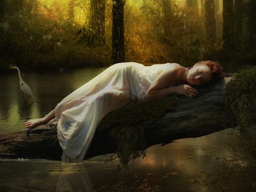 alone waiting tree love girl