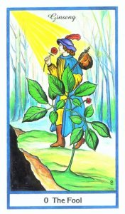 Herbal Tarot  El Loco