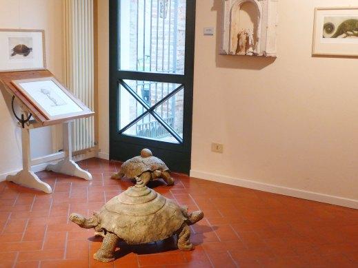 Ilaria Ciardi a Casa Varoli