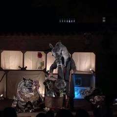 TCP Tanti Cosi Progetti ZUPPA DI SASSO / giardino di casa Varoli / Sabato 10 giugno / AccadeMia Perduta Teatri