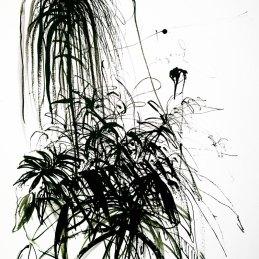 n.2 Antonio Bardino Spontanee a memoria, 2020, china su carta, 31,5x43,5 cm