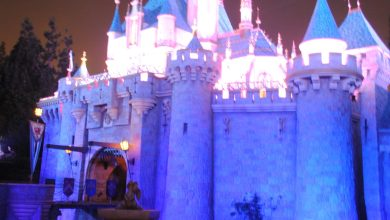 Photo of Disney Parks in Anaheim and Florida To Open For 24 Hours on February 29