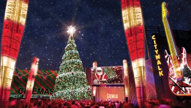 Photo of NBC4 Presents The Wishing Tree at Universal CityWalk, Granting Holiday Wishes to Guests and Viewers Live