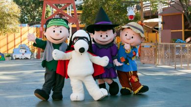 peanuts gang halloween cotumes knotts spooky farm