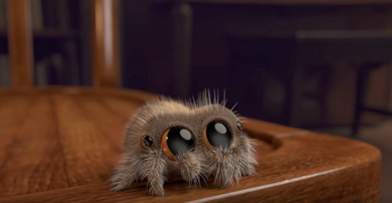 Lucas the Spider
