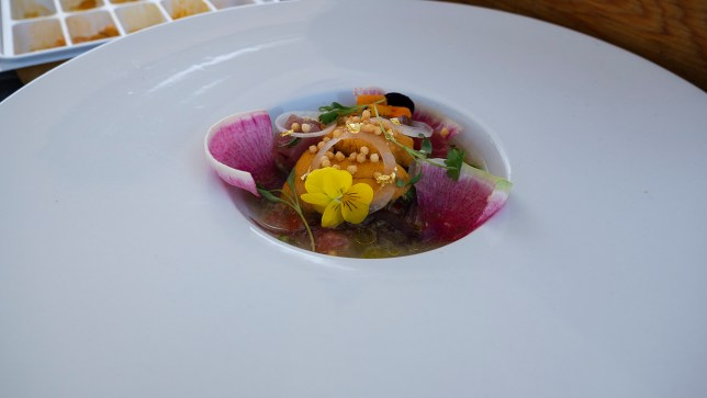 Ceviche Project at LA Food Fest