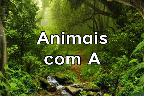 Animais com A