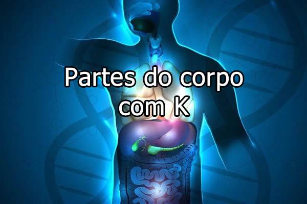 Partes do Corpo com K
