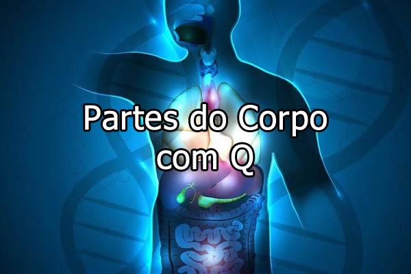 Partes do Corpo com Q
