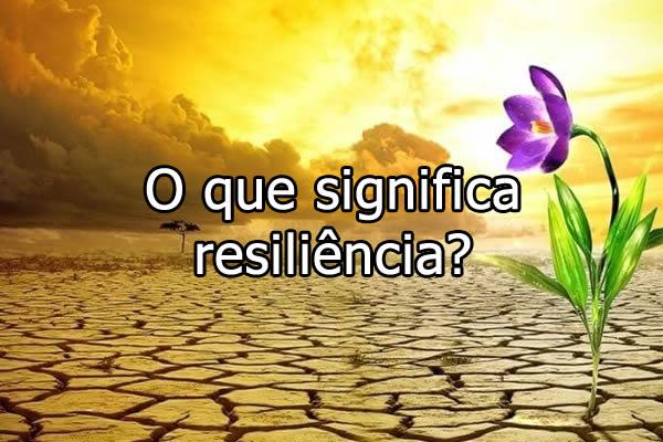 O que significa resilincia