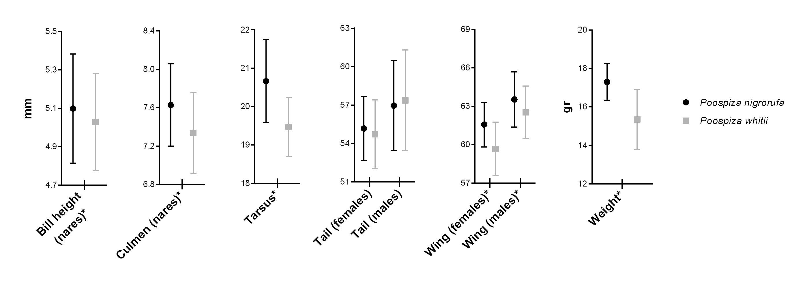 Revise species limits in Polioptila guianensis complex