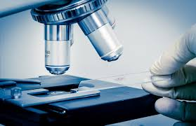 biotechnology study
