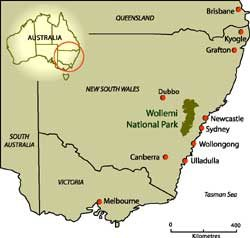 Location of Wollemi National Park