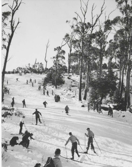 skiing on Mount Donna Buang in 1947