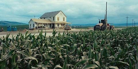 Cornfields planted in Oregon for 'Interstellar'