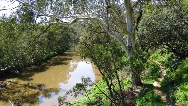 A picture of Yarra Bend Park, Melbourne