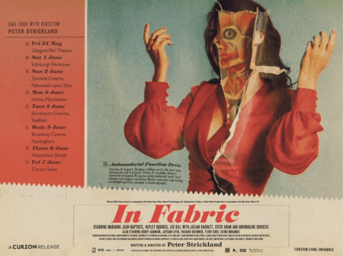 Movie poster for the film 'In Fabric'