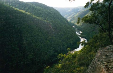 The Wollemi National Park