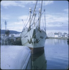 The salvage ship Holmpark berthed at Queens Wharf, Wellington