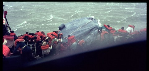 Passengers in lifejackets attempting to board a liferaft