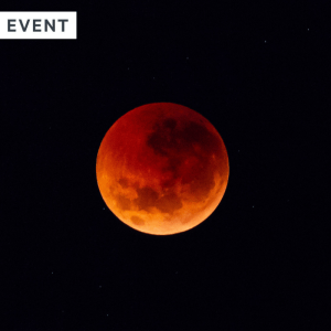 Lunar eclipse, red moon in the night sky