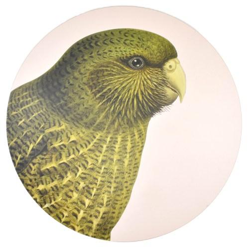 Gifts, Homewares, Placemat, Kakapo, 100 Percent New Zealand