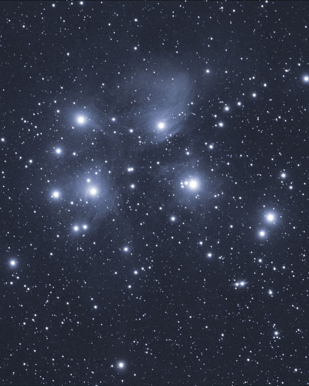Matariki in the night sky