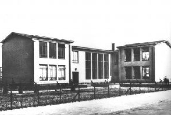 Gele scholen