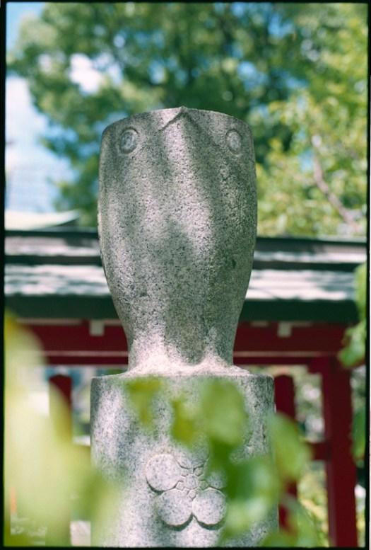 水鏡神社の鷽