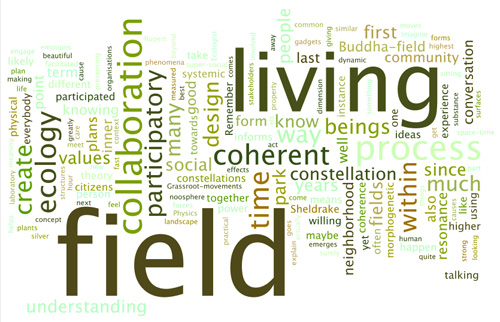 A wordl cloud of the most frequent words in this article