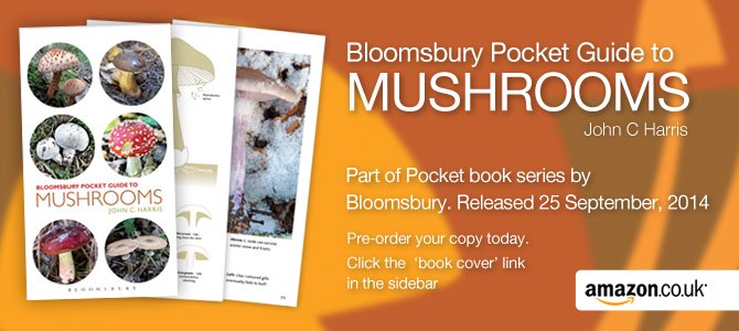 Bloomsbury Pocket Guides: Mushrooms