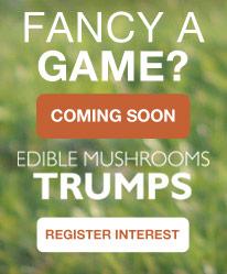 Mushroom Game