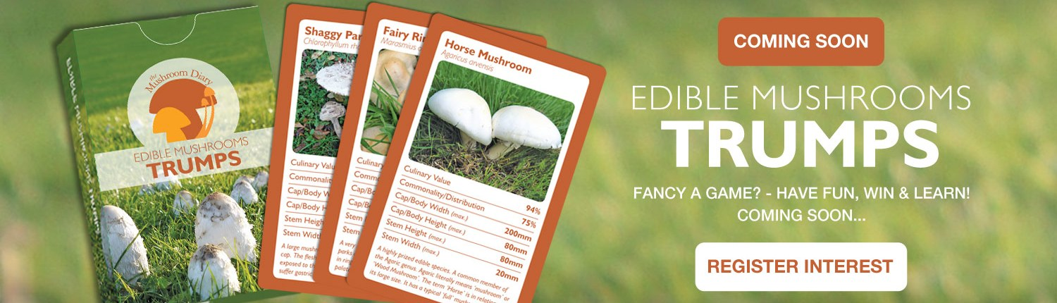Trumps game - edible mushrooms