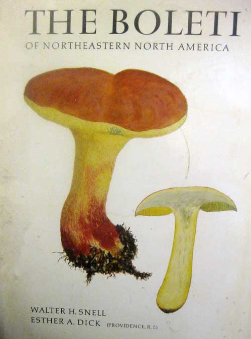 """When I was growing up, this book was just called """"Snell and Dick"""""""