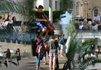 VIVRE la MUSIQUE au CŒUR de la NATURE, à l'Académie la liberté est au cœur de la verdure.