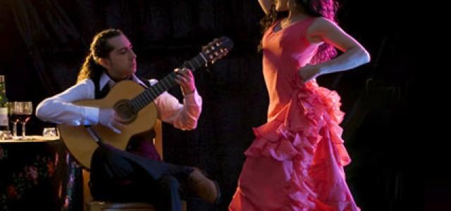Flamenco–640×300